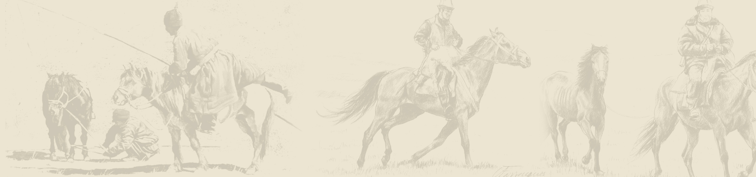 fond-slider-cheval
